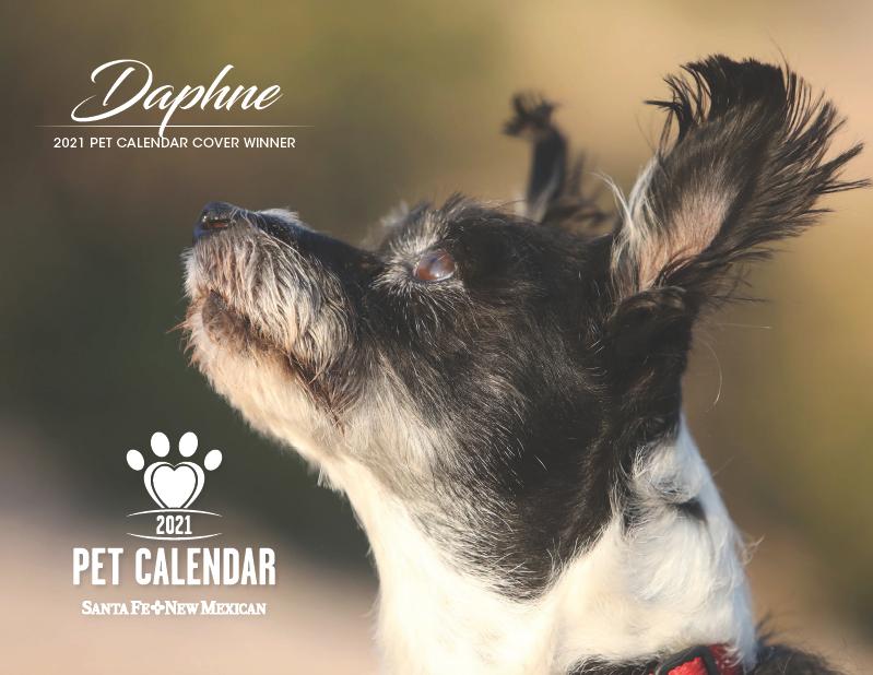 2021 Pet Calendar